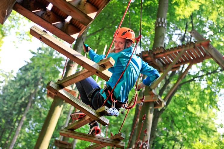 adventureforest15